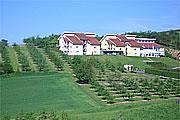 Hotel Becksteiner Rebenhof