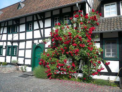 Hotel Falderhof Bild 2