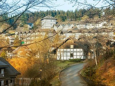 Dorint Hotel & Sportresort Winterberg-Sauerland Bild 8