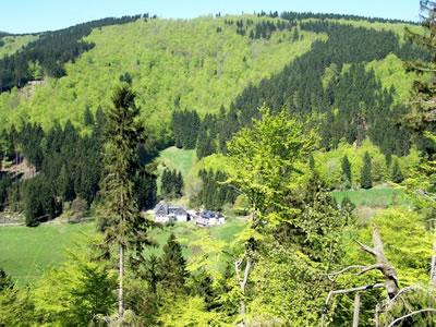 Landhaus LiebLommerke Bild 6
