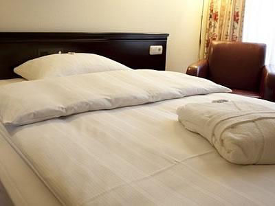 Sachsenwald Hotel Reinbek Bild 6