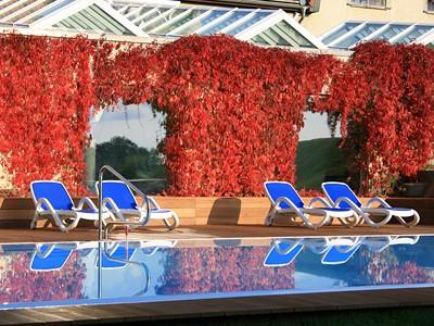 Hotel & SPA Sommerfeld Bild 8